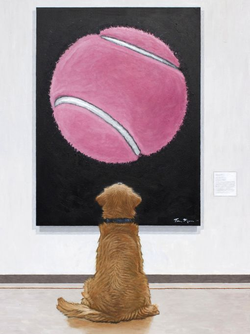 Pink Ball At The Museum
